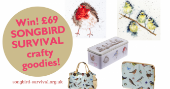 £69 Songbird Craft Bundle