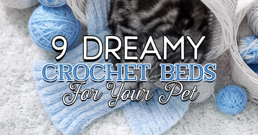 9 Dreamy Crochet Beds For Your Pet