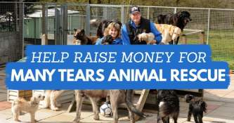 Help Raise Money For Many Tears Animal Rescue