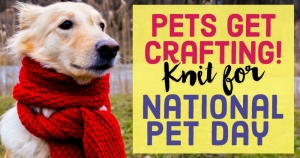 Pets Get Crafting! Knit for National Pet Day