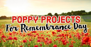 Poppy Projects For Remembrance Day