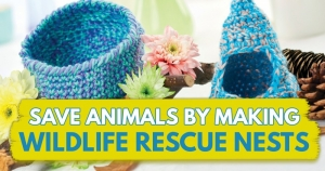 Save Animals By Making Wildlife Rescue Nests