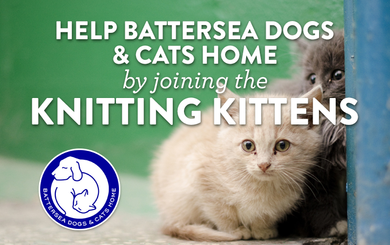 Knitting Kittens Battersea : Help battersea dogs cats home by joining the knitting