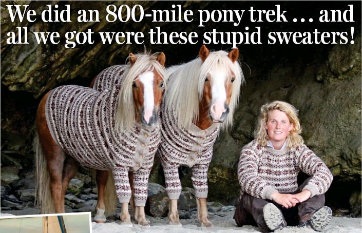 Ponies Presented with Fair Isle Jumpers